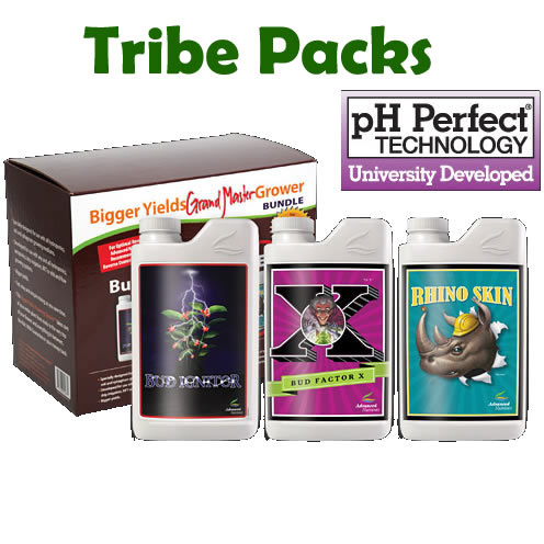 Advanced Discount Tribe Packages